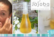 jojoba oil review